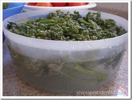Congelando o Brócolis3