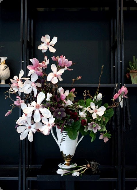 magnolia Sophia_Moreno_Bunge_Emily_Thompson florist _Seasonal_Arrangement6 Sophia Moreno-Bunge photo