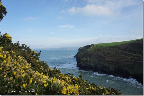 Cornwall (2)