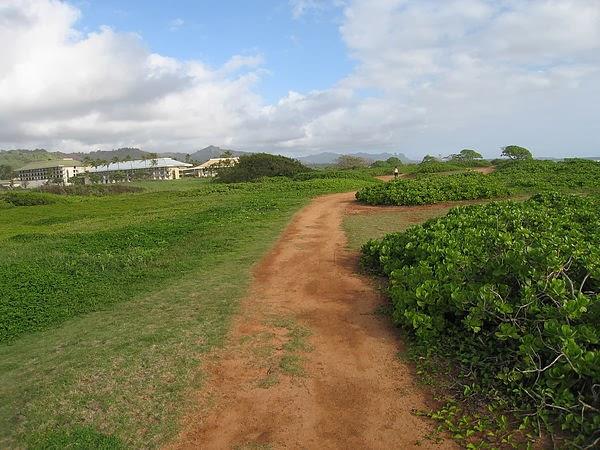 可愛島早晨 跑步