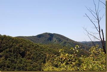 Monte Bucine