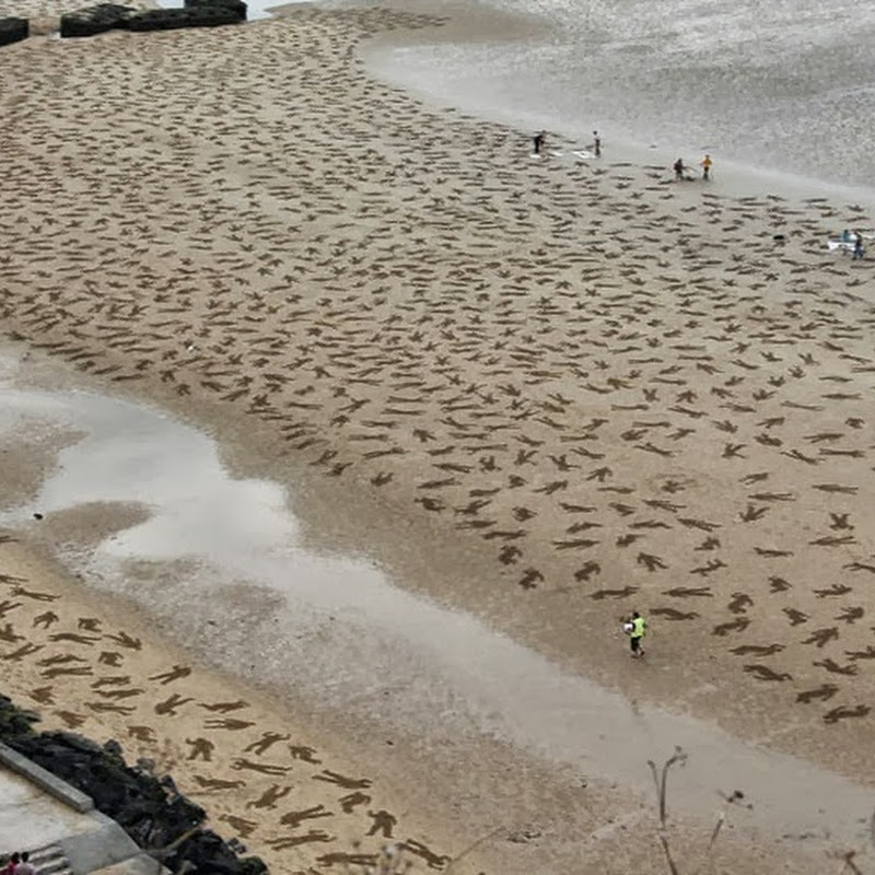 9,000 Soldiers Stenciled On Normandy Beach To Commemorate D-Day Landings