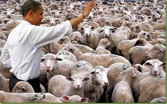 obama-with-sheep