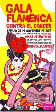 gala-flamenca-a(amacum)