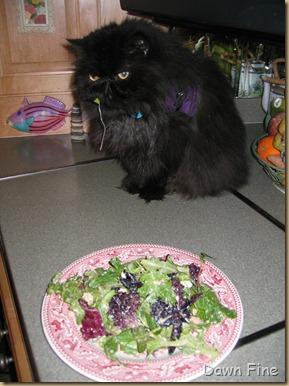 balle salad