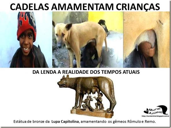 cadela_amamenta_menino