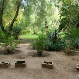 Les urnes de Carthage