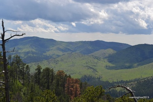 View from the top of Coolidge Mountain