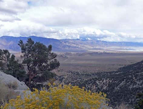 Owens Valley View