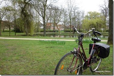 市立公園とマイチャリ
