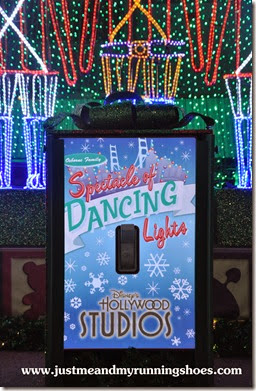 Osborne Family Spectacle of Dancing Lights (8)