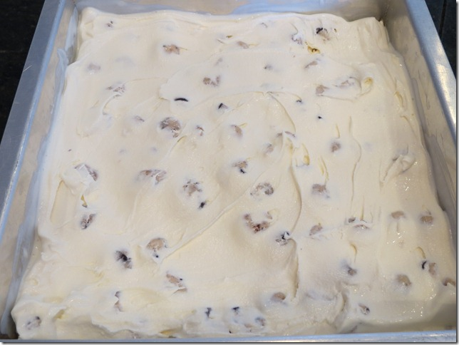 Chocolate Chip Cookie Dough Ice Cream Layer