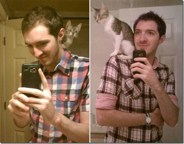 Antes e Depois de Animais de Estimação (22)