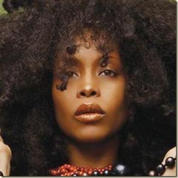 Tratamientos para el Cabello Afro1