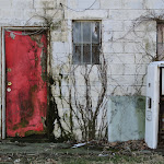 DavidThompson-Red Door.jpg