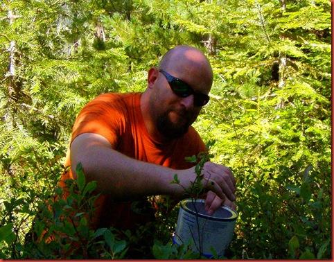 huckleberry 2010 010