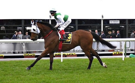 race 8 _speediness