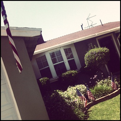 flagsonhouse