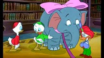 14 l'éléphant