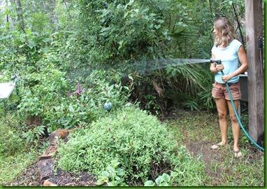 Elizabeths Secret Garden Living the Green life through