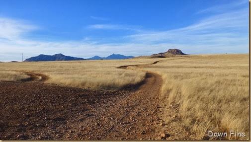 San Rafael Grasslands_001