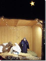 Christmas 2012 049