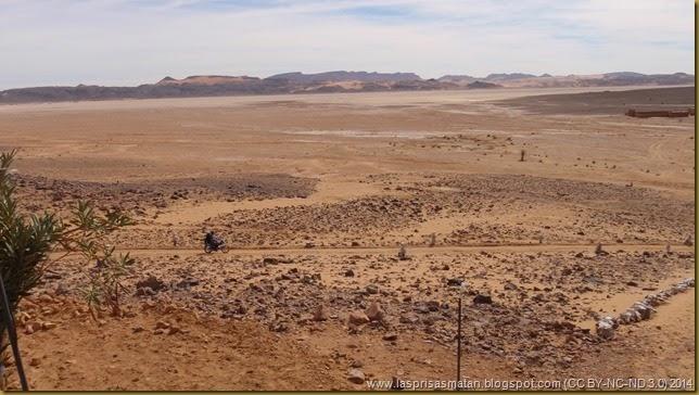 Desierto-341
