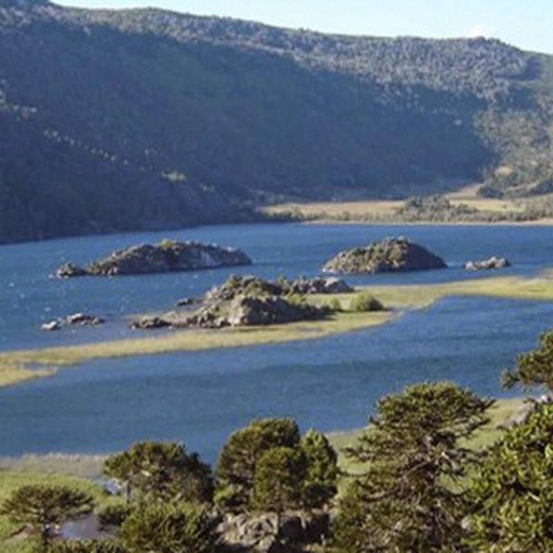 Villa Pehuenia, un paraiso escondido en Patagonia.