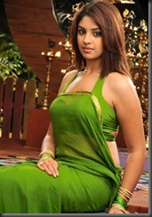 richa_in_saree