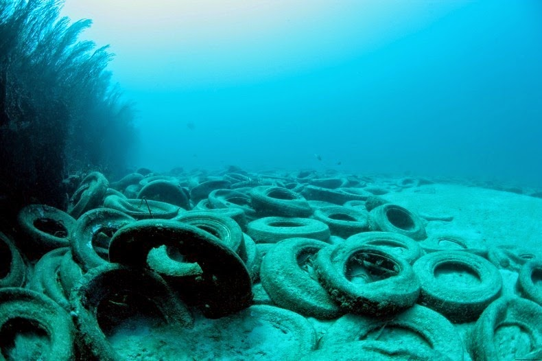 osborne-tire-reef-6
