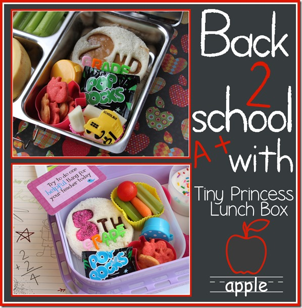 Back to school with tiny princess lunchbox!