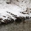 sneeuw220113maandag 041.jpg