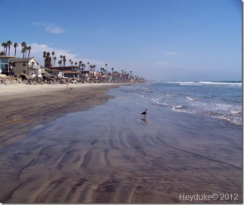Oceanside Beach CA 002