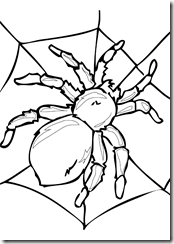 insects_coloring_pages (10)