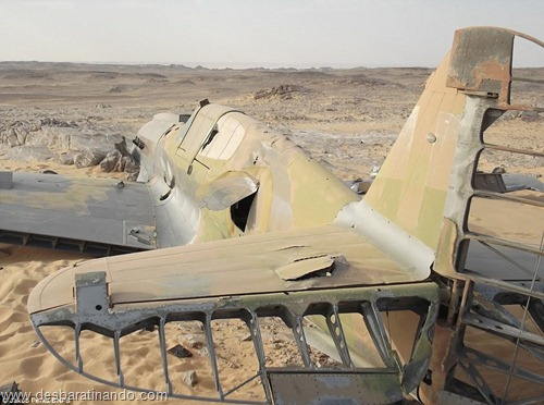 aviao Kittyhawk P-40 encontrado no deserto 70 anos desbaratinando  (5)