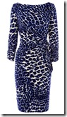 Coast Leopard Print Dress