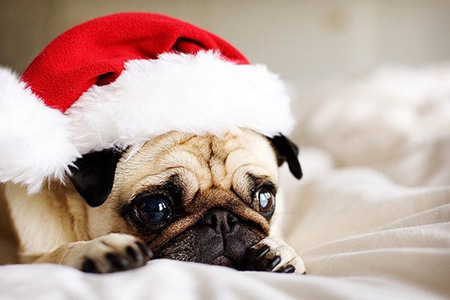 merry-christmass-l