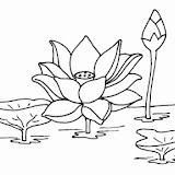 dibujos-flor-loto.jpg