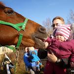Катання та спілкування з кіньми » Катання та спілкування з кіньми - грудень 2013