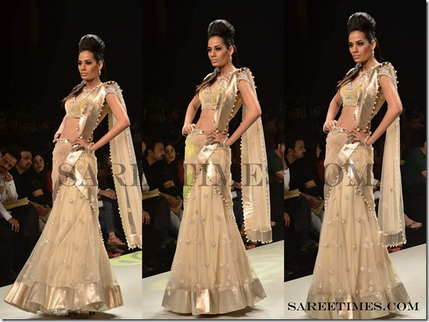 Tan_Designer_Saree.