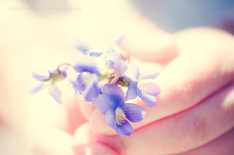 SycamoreLane Photography-©2014 -Child Photographer (10)