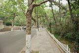 Qingdao - Badaguan