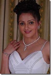 Sonali Joshi Hot  2