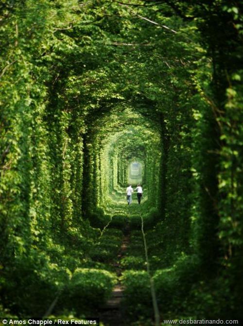 tunel do amor ucrania desbaratinando  (4)