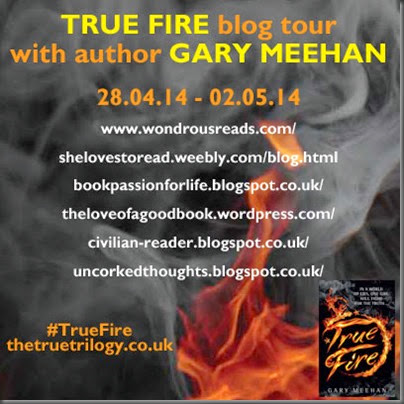 Meehan-TrueFire-BlogGraphic