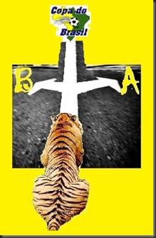 Tigre-Copa Brasil