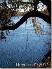 Suwannee River Rendezvous RV Park 004