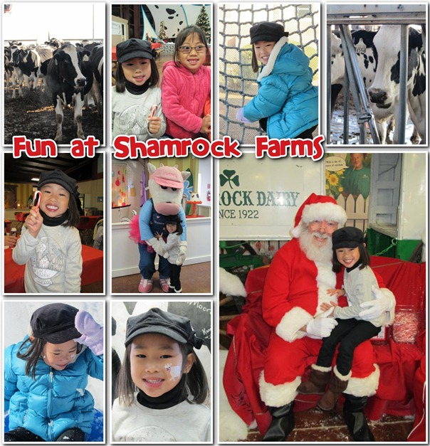Shamrock Farms