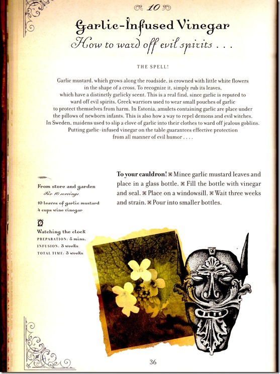 garlic infused vinegar sorceror cookbook page 1