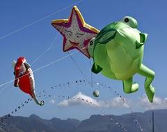 International_Kite_festival